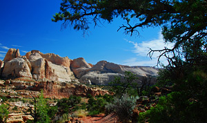 Cohab Canyon, Capitol Reef
