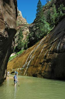 Nystery Falls, The Narrows, Riverside Walk, Zion Canyon